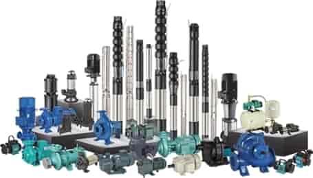 Lubi Pumps