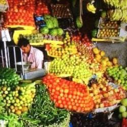 Shadab fruits wholesaler, Fatehabad Road - Coconut Wholesalers in