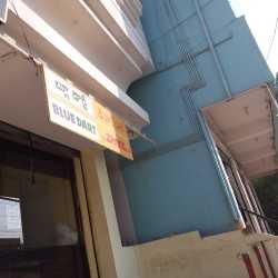 Bluedart Express Ltd, Aravinda Nagar - Courier Services in Anantapur