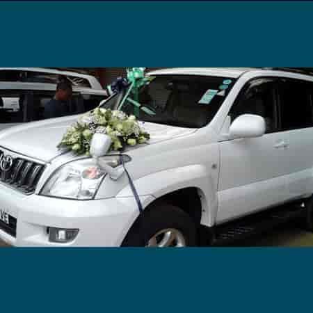 Wedding car decoration photos wilson garden bangalore pictures our decoration wedding car decoration photos wilson garden bangalore flower decorators for junglespirit Choice Image