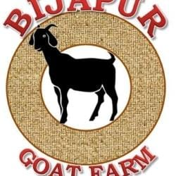 Bijapur Goat Farm, Bijapur - Goat Farming in Bijapur-Karnataka