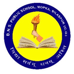 B N S Public School, Nearby Dhan Mandi - English Medium