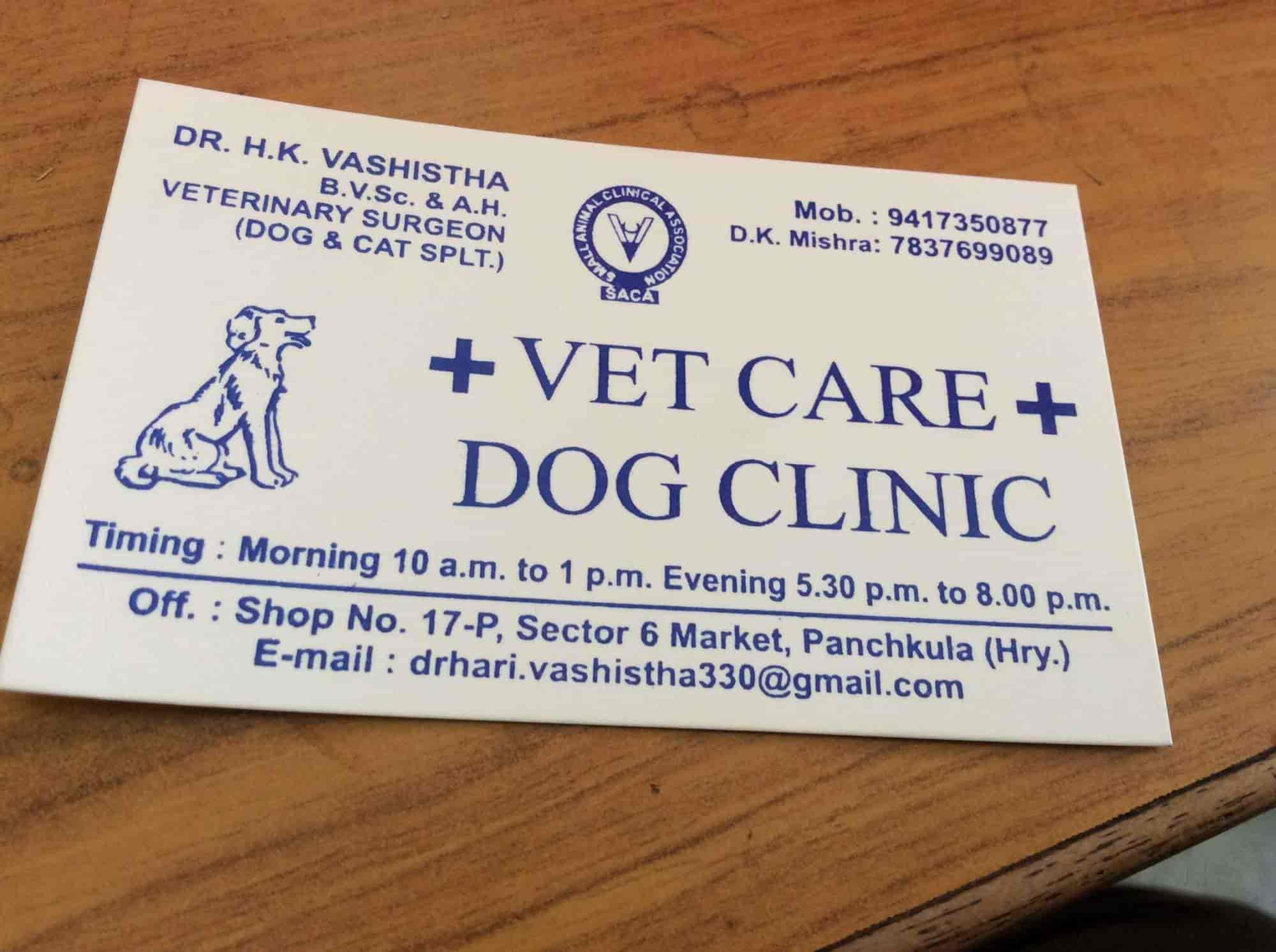 Vet Care Dog Clinic Photos, Sector 6, Chandigarh- Pictures & Images ...