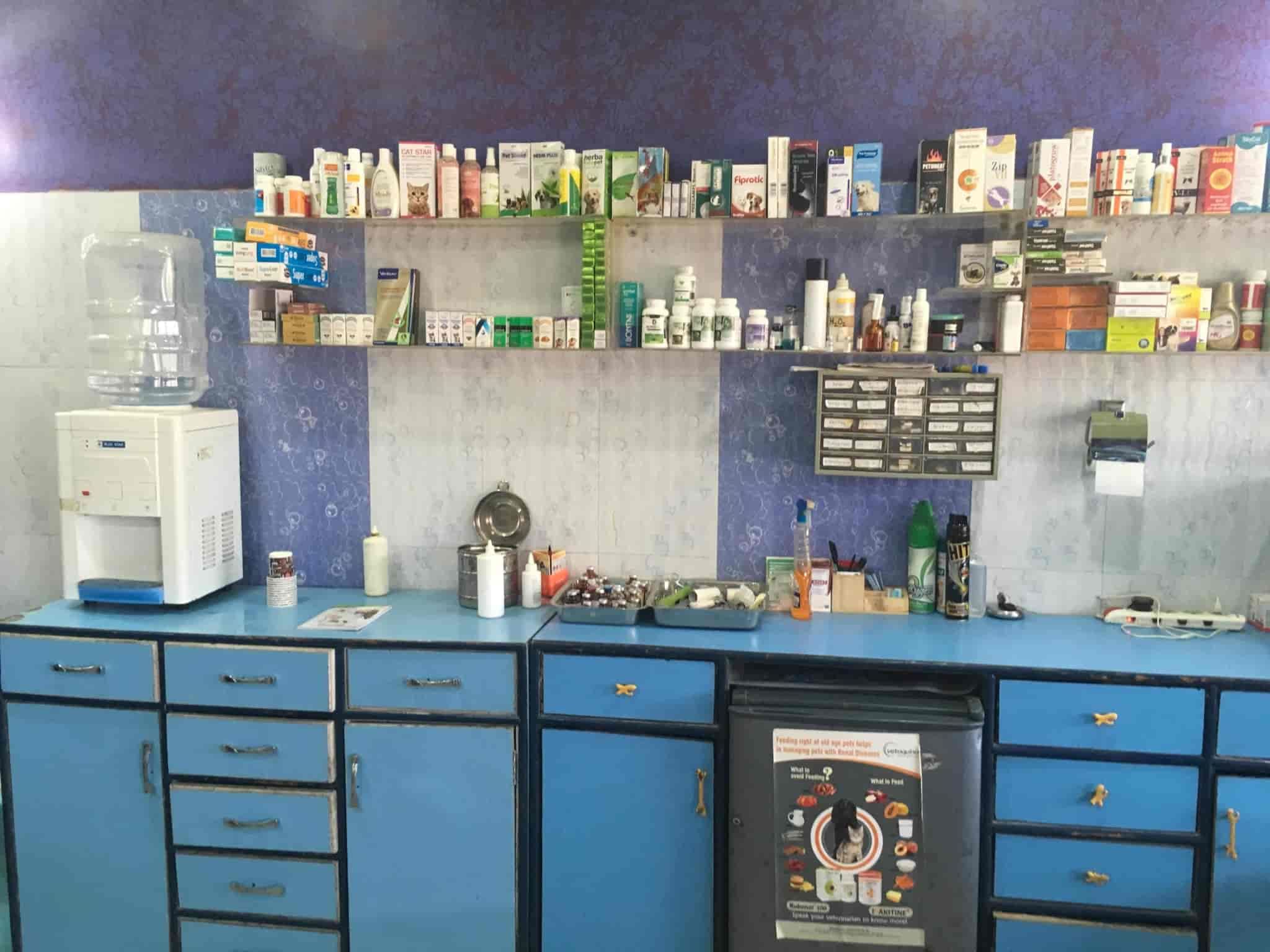 Dog Clinic Pet Shop Photos, Khudda Lahora, Chandigarh- Pictures ...