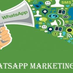 Webcart Digital Marketing Solutions, Zirakpur HO - Bulk SMS