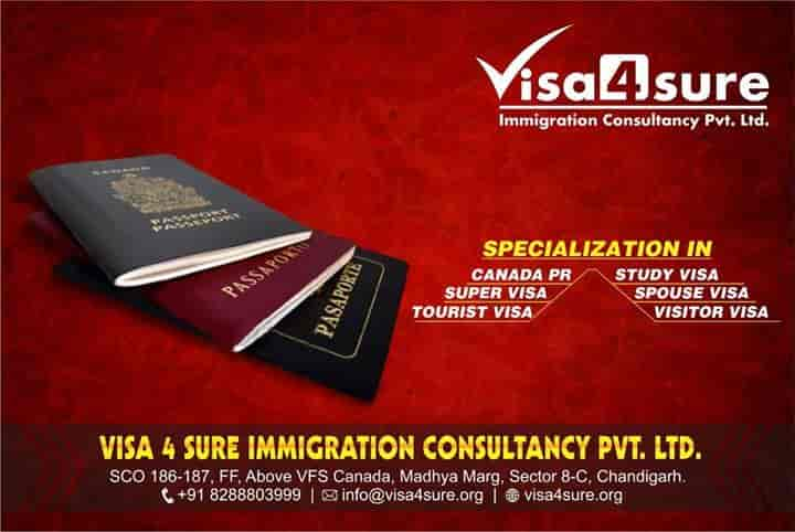 Visa 4 Sure Immigration Consultancy Pvt Ltd Photos