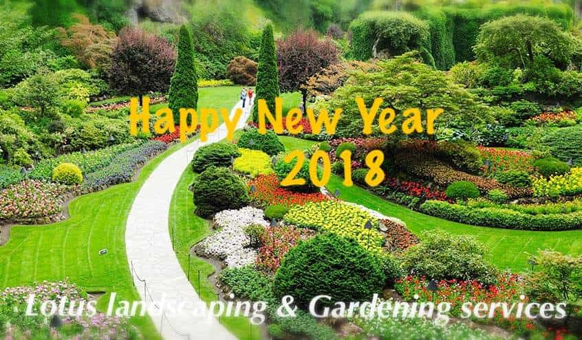Landscaping Gardening Services Lotus landscaping gardening services sector 53 phase 3a lotus landscaping gardening services sector 53 phase 3a landscape gardening in chandigarh justdial workwithnaturefo