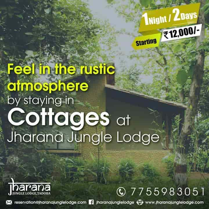 Jharana Jungle Lodge, Chimur Chandrapur - Resorts in