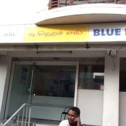 Blue Dart Express, Teynampet, Chennai - Domestic & international