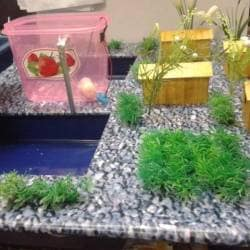 Pooja School Level Science Projects, Mount Road - Engineering