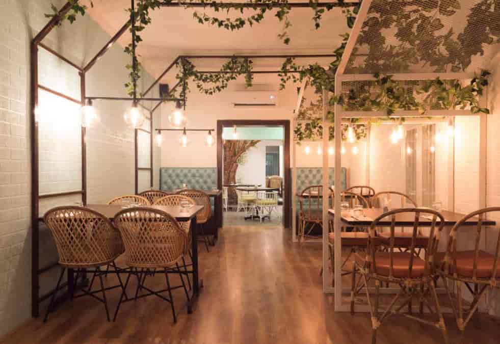 The Bark, Alwarpet, Chennai - Continental Restaurants - Justdial