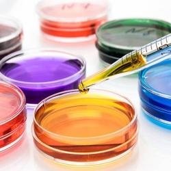 Kiruba Chemicals, Anna Nagar East - Phenyl Manufacturers in Chennai