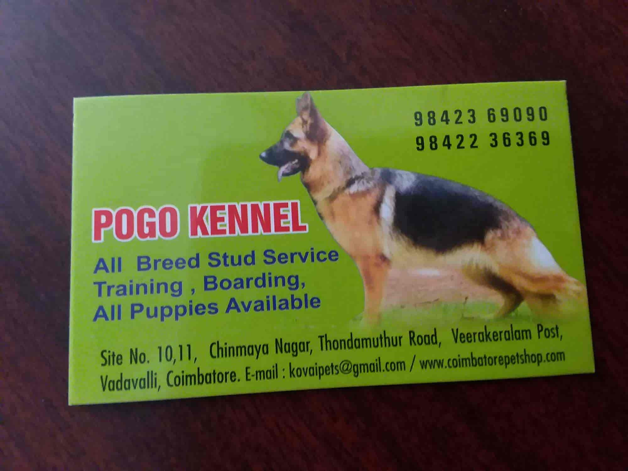 New Kovai Pets - Pet Shops For Dog - Book Appointment Online