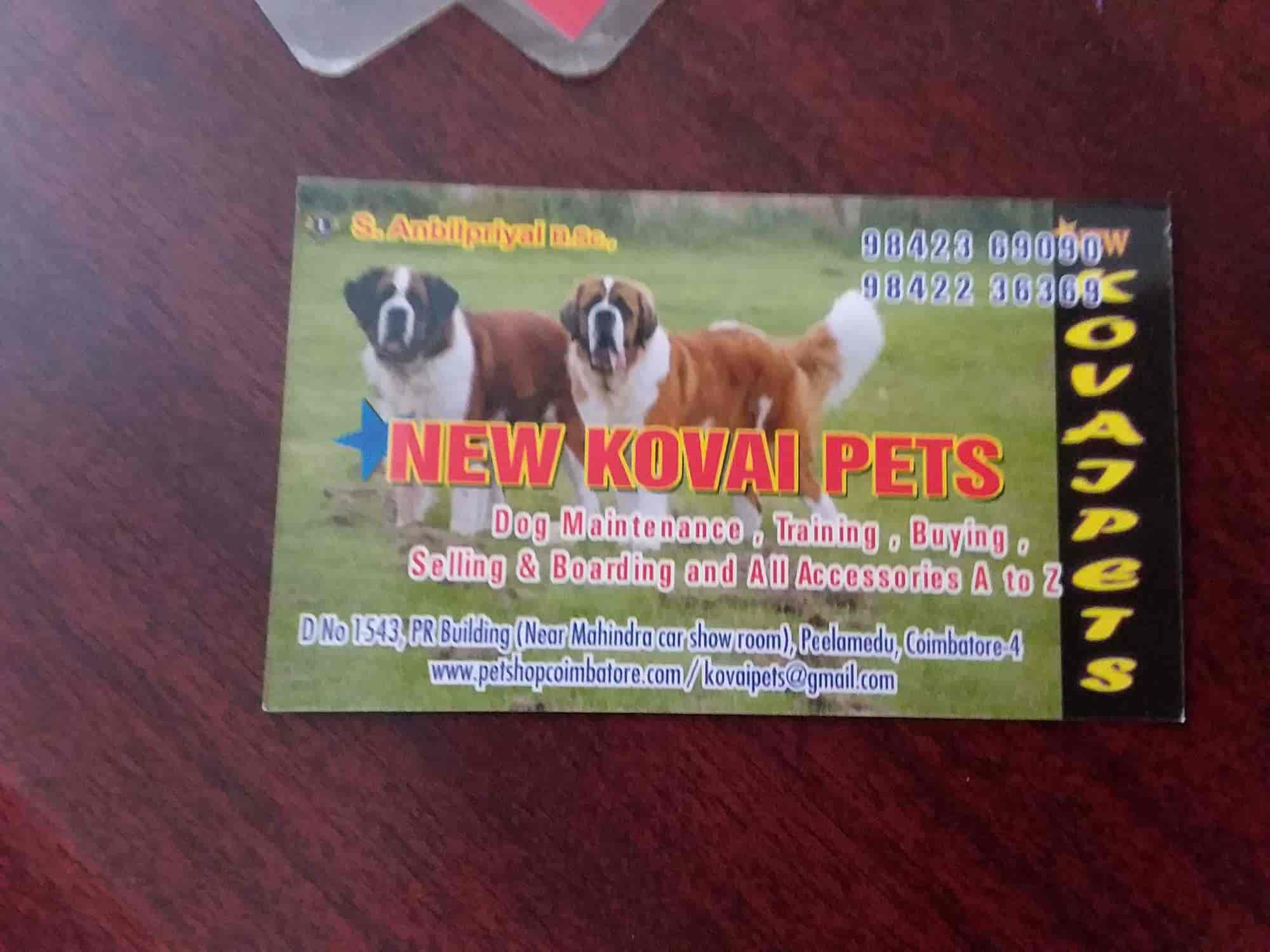 New Kovai Pets - Pet Shops For Dog - Book Appointment Online - Pet