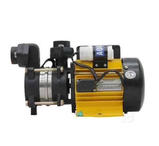 Lakshmi pumps