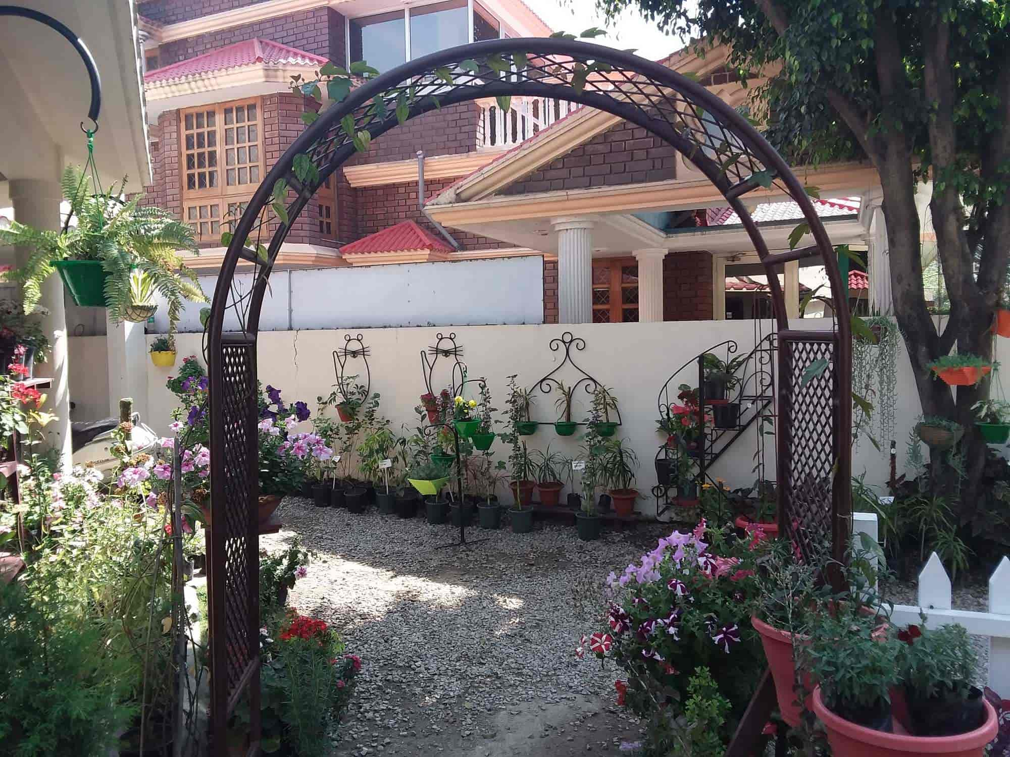 ... Nature The Garden Store Photos, Dehradun City, Dehradun   Plant  Nurseries ...