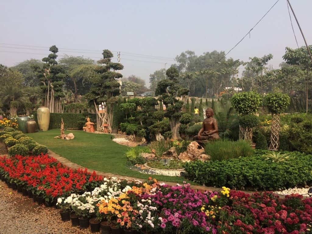 Greenways Nursery, Fatehpur Beri - Plant Nurseries in Delhi - Justdial