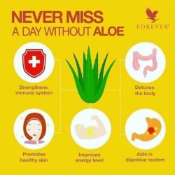 Forever Living Products Independent Distributor, Ranjit Avenue