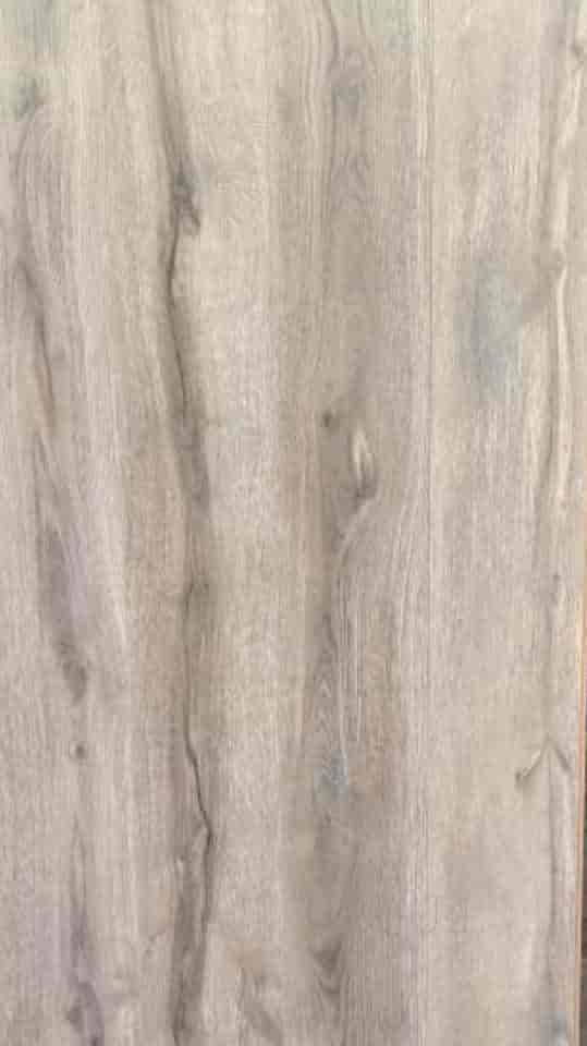 Tiger Wood, Kirti Nagar - Wall Paper Importers in Delhi