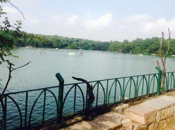 Hauz Khas District Park in Delhi