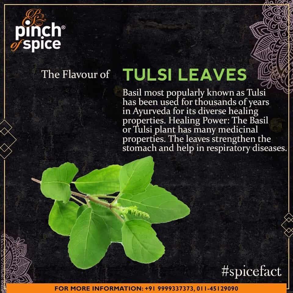 Pinch Of Spice, Rajouri Garden, Delhi - Tandoori