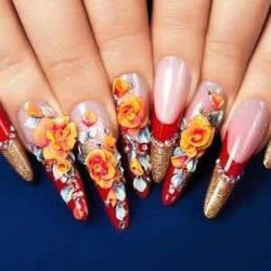 just-nails-model-town-2-delhi-beauty-parlours-for-nail-extension-rfo5t-250 Nail Art 2 @bookmarkpages.info