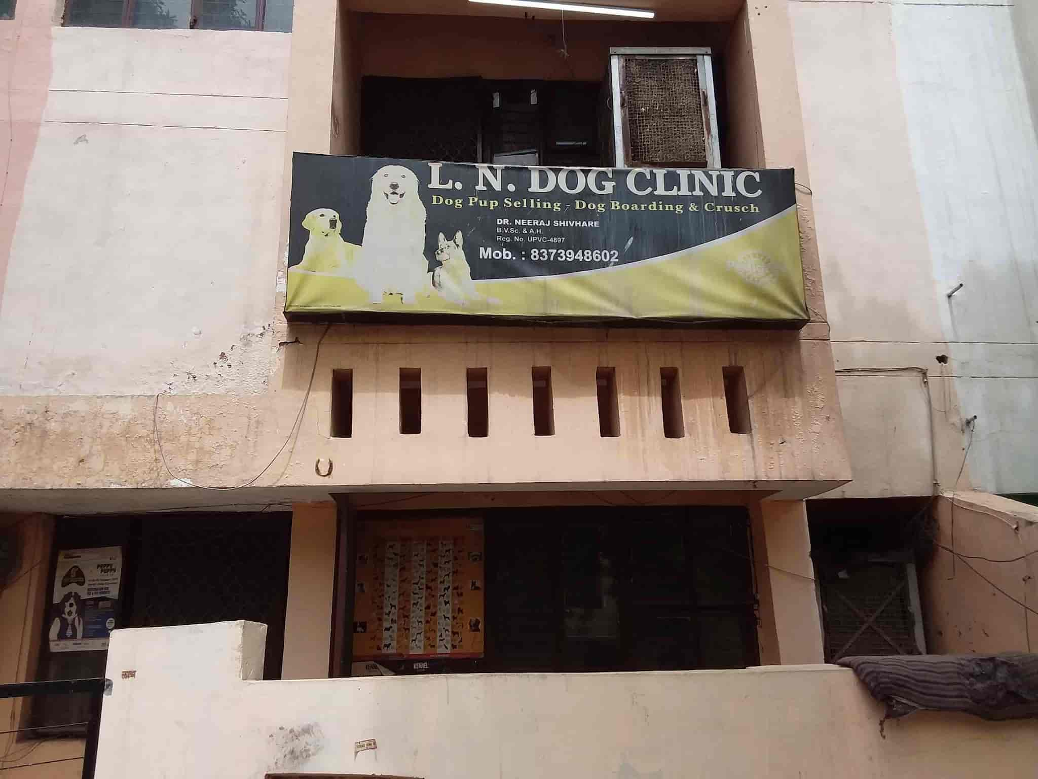 L N Dog Clinic - Veterinary Clinics - Book Appointment