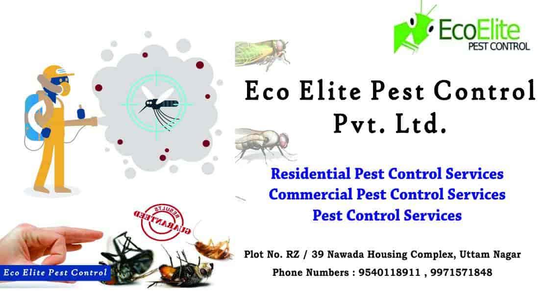 Eco Elite Pest Control Pvt Ltd Tilak Nagar