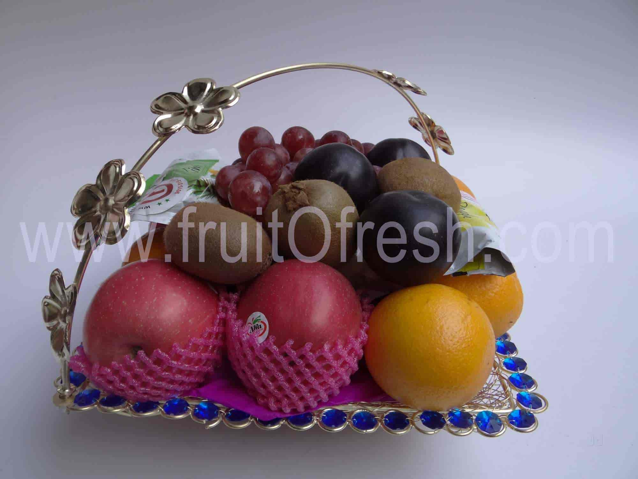 Fruit O Fresh Inc, Azadpur - Fruit Wholesalers in Delhi