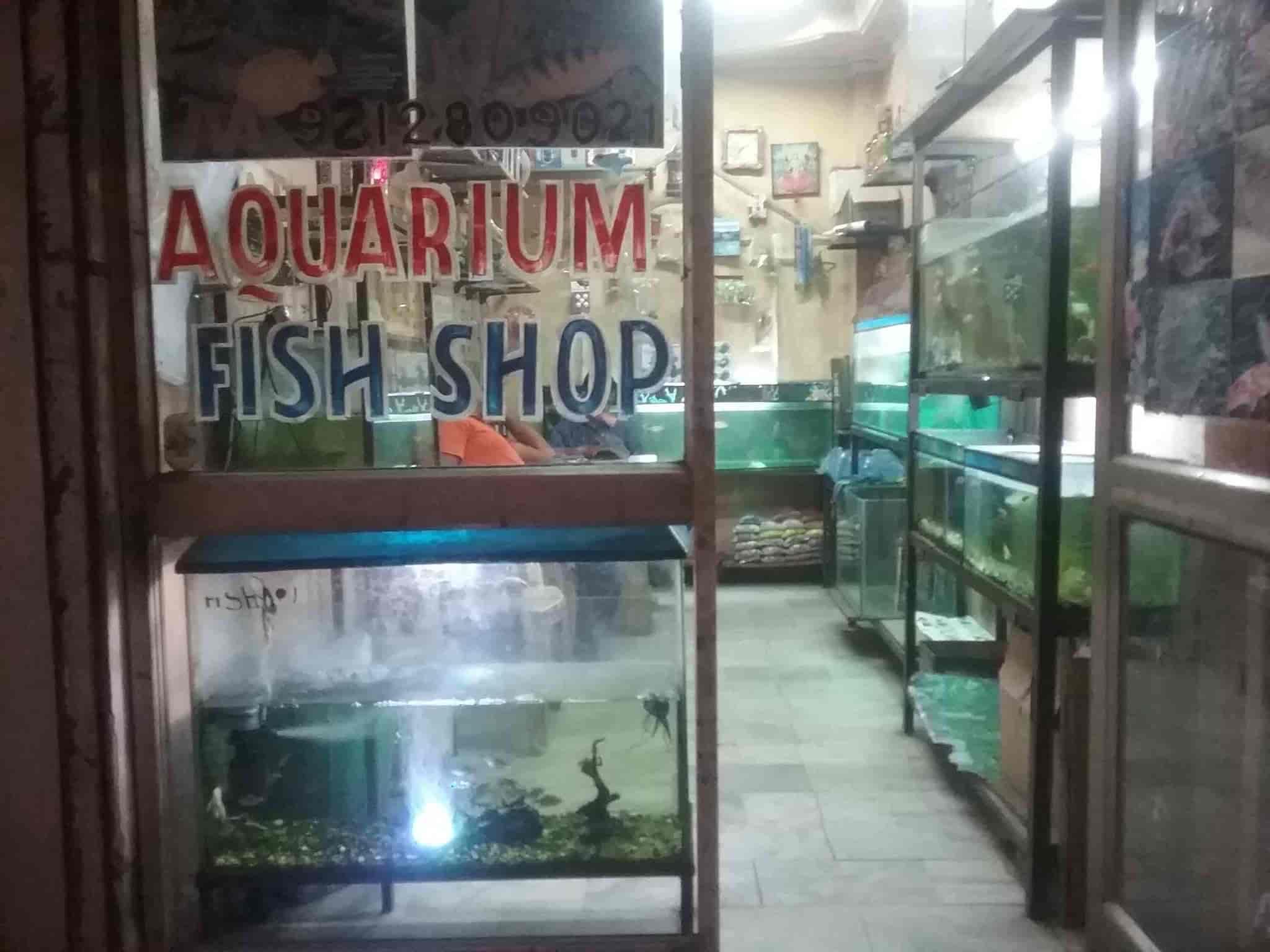 Baba Ji Fish World Aquarium s Subhash Nagar Delhi NCR