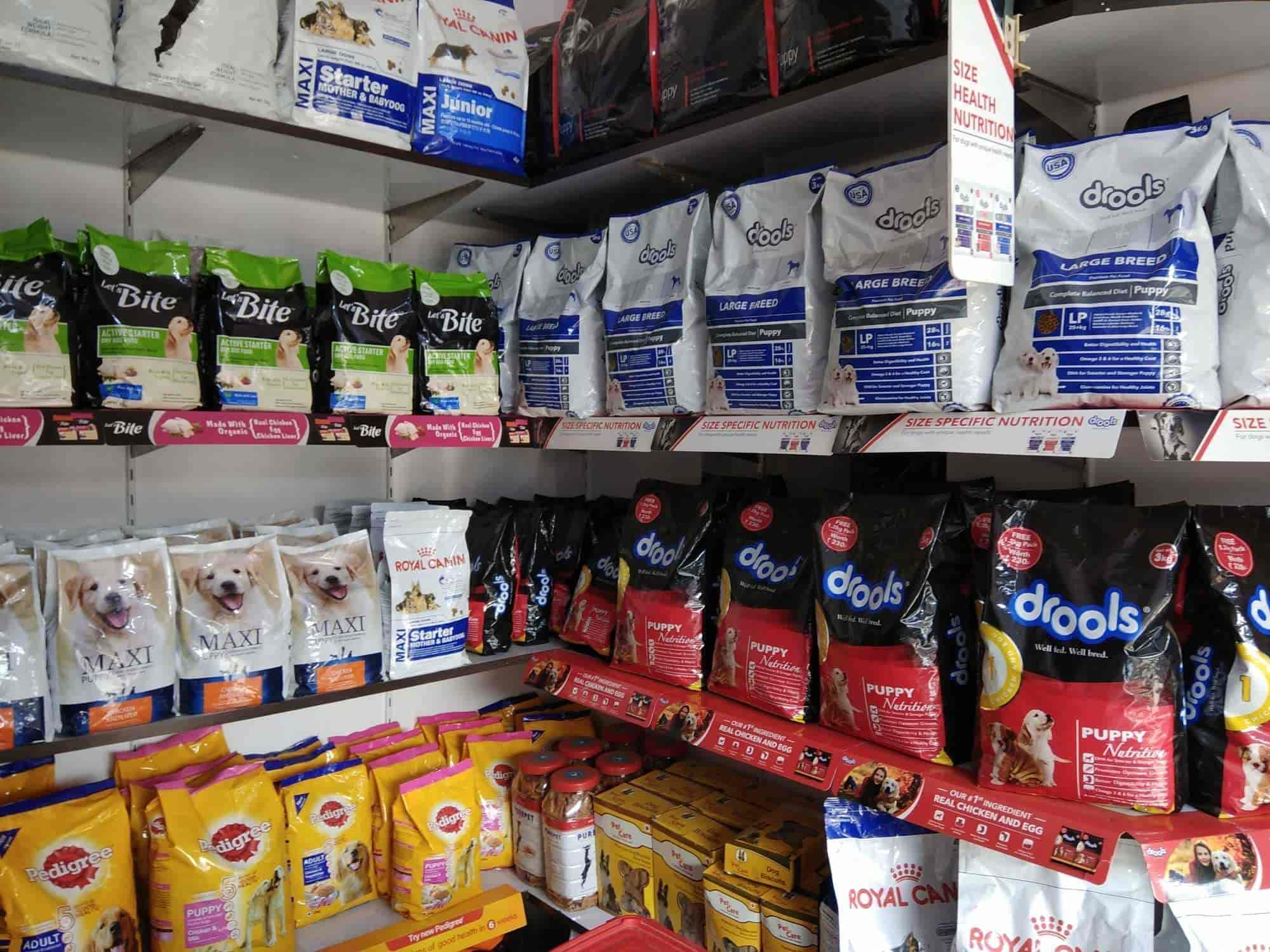 ... Inside view OF Pet & Accessory Shop - Amazing Pet World Photos, Jharia,  Dhanbad ...