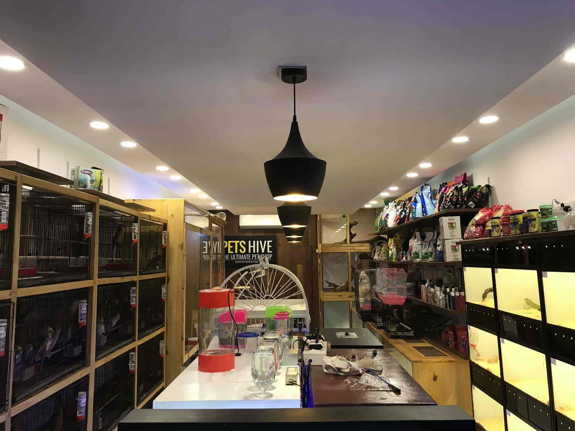 Pets Hive, Nettoor - Pet Shops in Ernakulam - Justdial