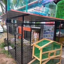 Pet Palace, Elamkunnapuzha - Pet Shops in Ernakulam - Justdial