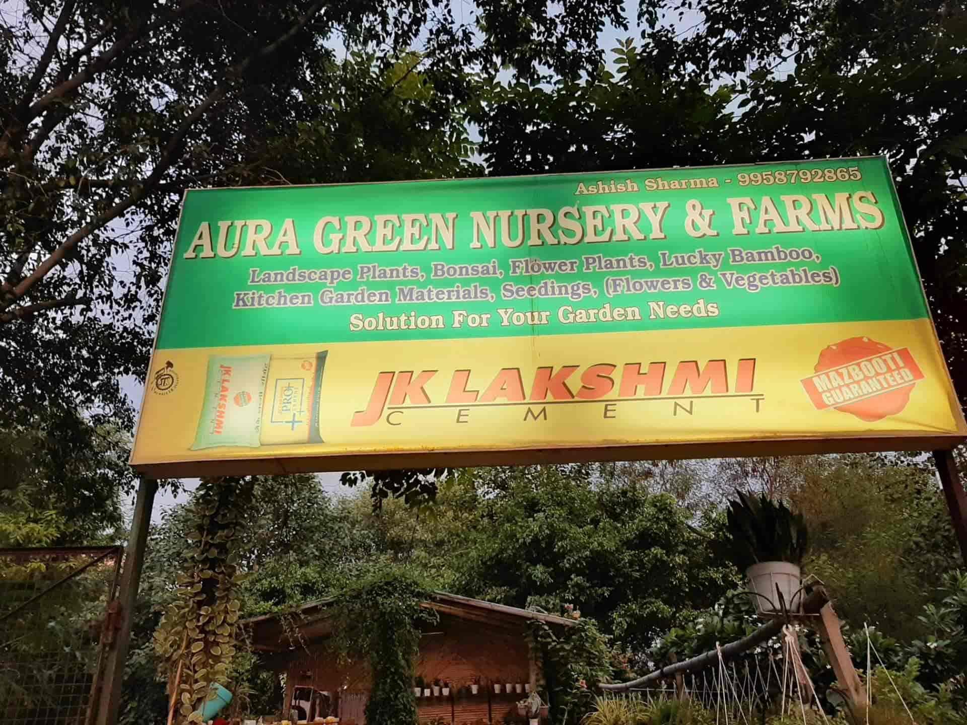 Aura Greens Nursery And Farms, Sahibabad Industrial Area