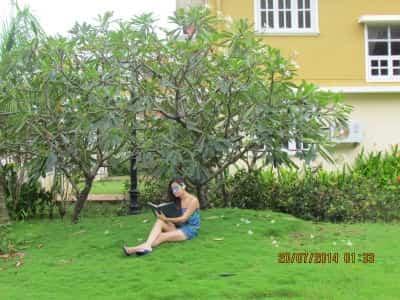 Florida Gardens B And B, Colva   Florida Gardens B U0026 B   Hotels In Goa    Justdial