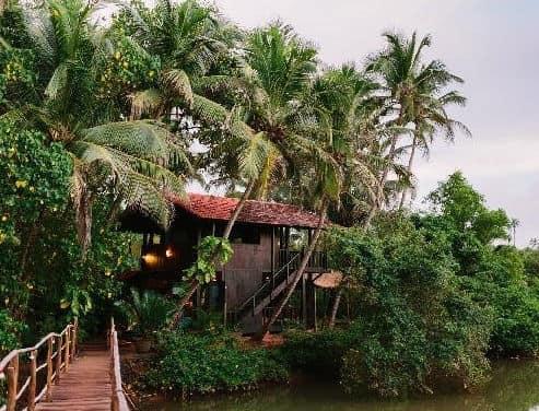 Ashiyana Yoga Centre,  Goa