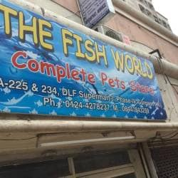 The Fish World Complete Pets Store, Dlf City Phase 4 - Pet Shops in