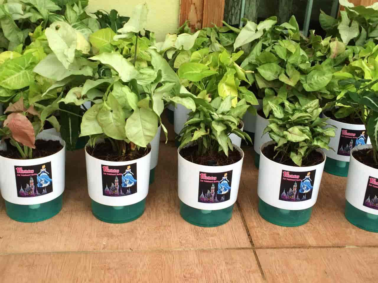 Gift A Plant, Madhapur - Corporate Gift Manufacturers in