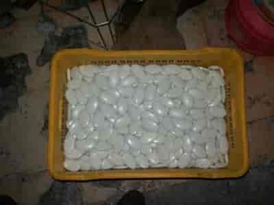 Sri Yog Industries, Jeedimetla - Ayurvedic Soap
