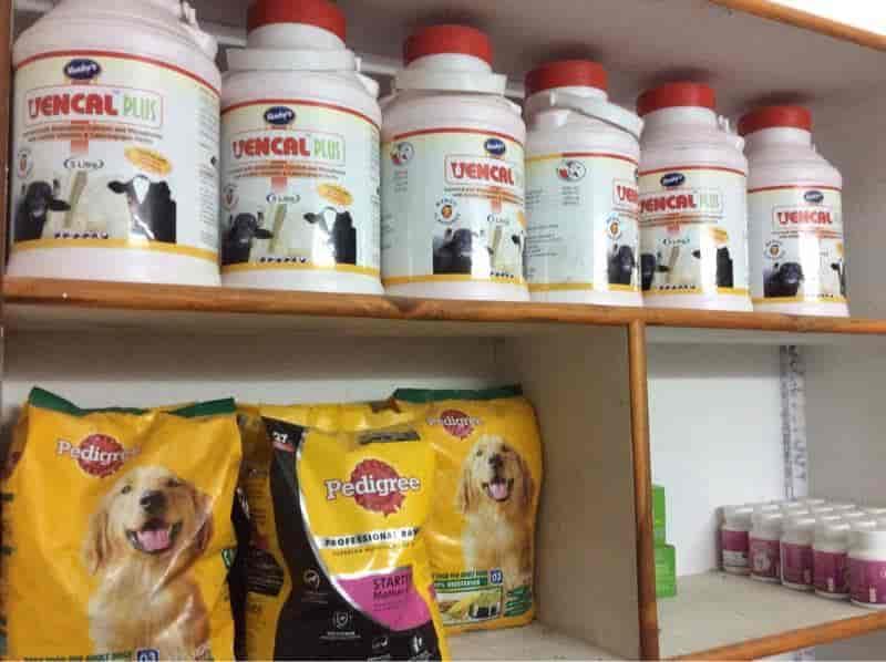 Vgs Pet Vet Clinics Photos, L B Nagar, Hyderabad- Pictures & Images