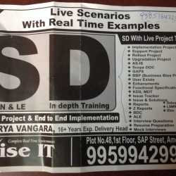 Rise It, Ameerpet - Computer Training Institutes For SAP Sd in