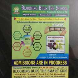 Blooming Buds The School, Purana Pul - Schools in Hyderabad