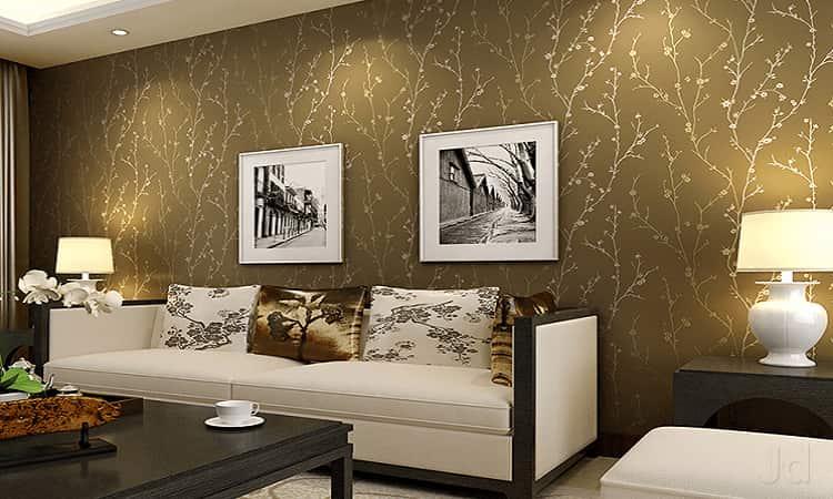 Model View Elegant Wall Design Photos Suncity Langar House Hyderabad
