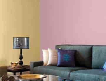 regional Asian paints