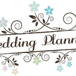 Avi Weds Planeer Nipania Indore Wedding Planners In