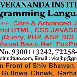 Vivekananda Institute Of Computer Science and Technology