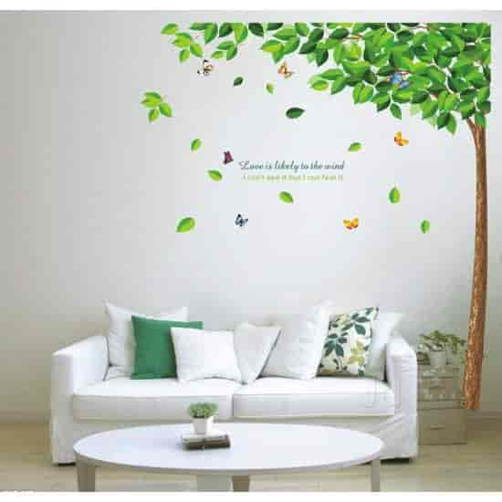absolute home wall sticker photos, sanganer, jaipur- pictures