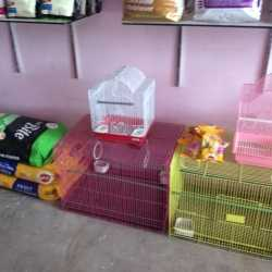 Sona Pet Shop, Murlipura - Pet Shops in Jaipur - Justdial