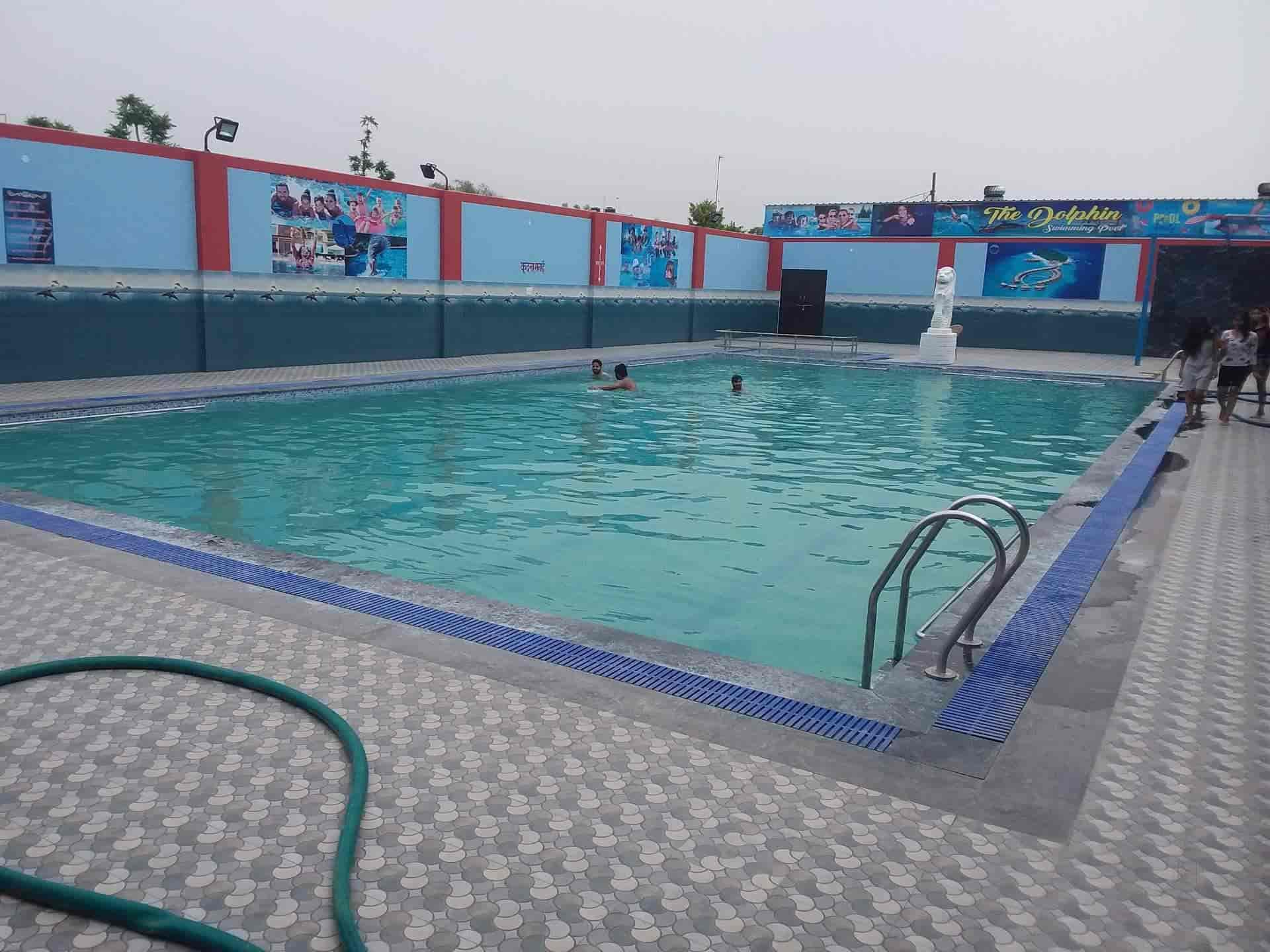 The Dolphin Swimming Pools, Mansarovar - Swimming Pools in ...