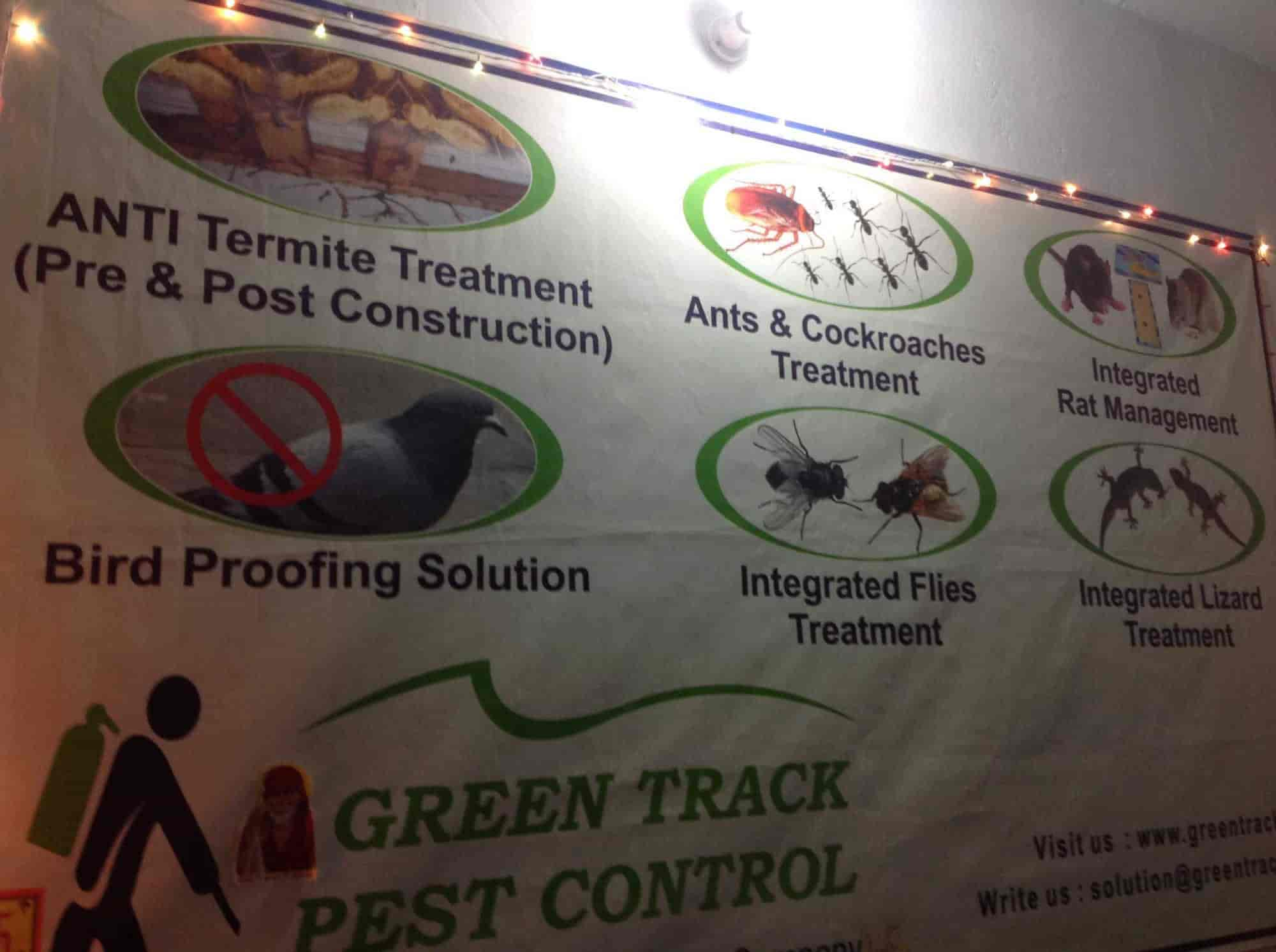 Green Track Pest Control Photos, Kidwai Nagar, Kanpur- Pictures